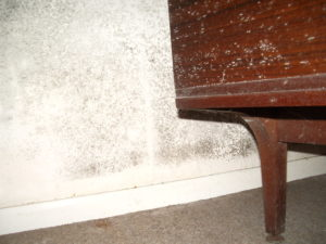 Black mould behind furniture indicates an area of poor ventilation and cold