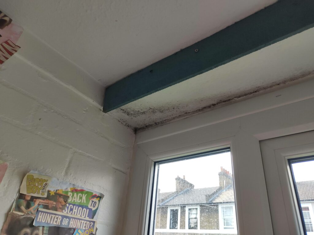 Mould in a classroom of a school near the window frame